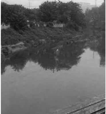 苏坡桥的前世今生